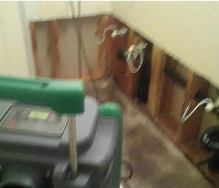 Mold Damage – Port Orange Home After