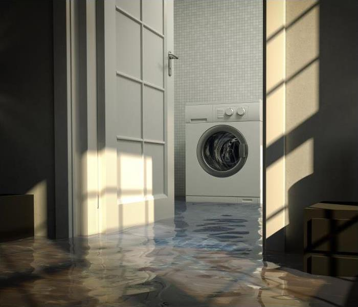 Water Damage Don't Panic When Your Washing Machine Fails And Causes Damage To Your Daytona Beach Home