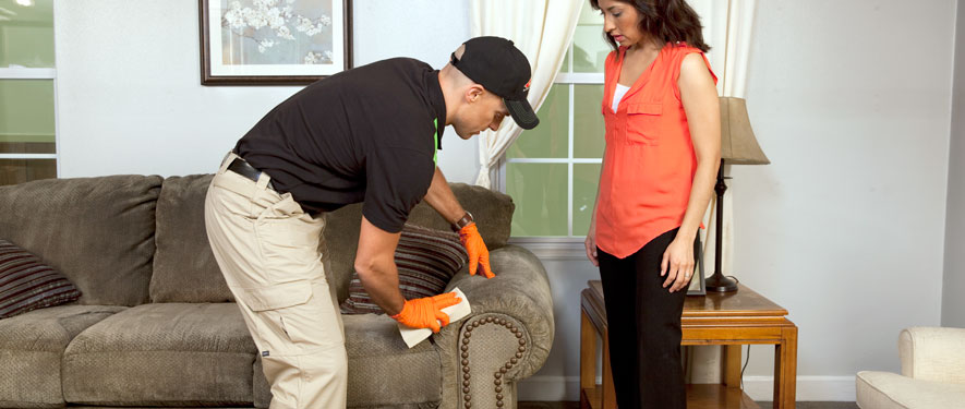 South Daytona, FL carpet upholstery cleaning